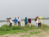 Birders at Craney Island